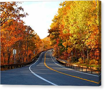 Autumn Scene With Road In Forest Canvas Print by Lanjee Chee