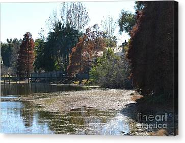 Canvas Print featuring the photograph Autumn Serenity by Carol  Bradley