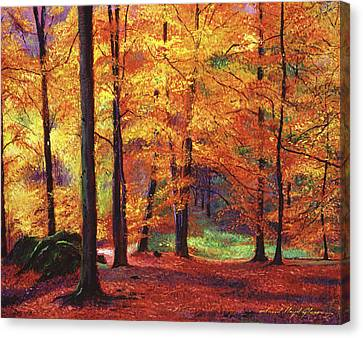 Autumn Serenity Canvas Print by David Lloyd Glover