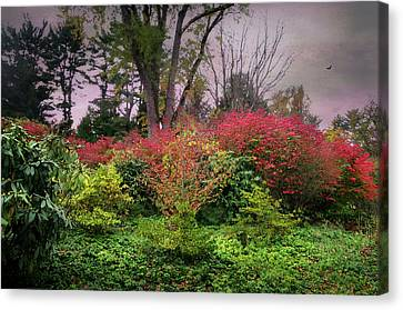 Autumn Settling In Canvas Print by Diana Angstadt