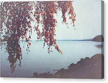 Canvas Print featuring the photograph Autumn Shore by Ari Salmela