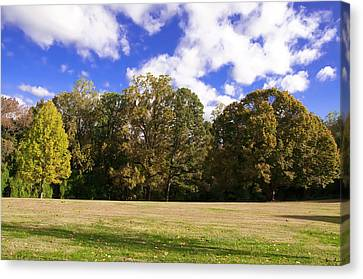 Autumn Skies Canvas Print by Bill Cannon