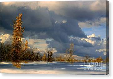 Autumn Skies  Canvas Print