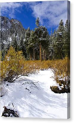 Autumn Snow Canvas Print by Chris Brannen