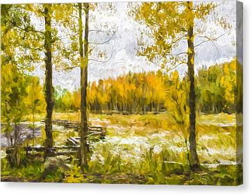 Autumn Snow Fall II Canvas Print by Jon Glaser