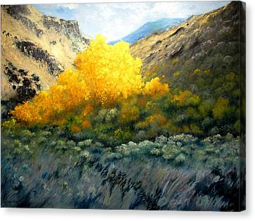 Autumn-southhills Canvas Print