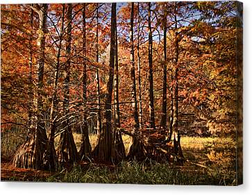 Canvas Print featuring the photograph Autumn Splendor At Lake Murray by Tamyra Ayles
