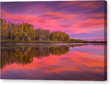 Darren Canvas Print - Autumn Splendor by Darren White