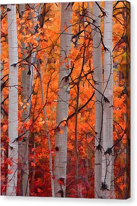 Autumn Splendor Canvas Print by Don Schwartz