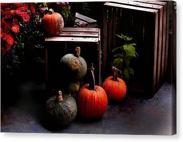 Autumn Squash Canvas Print by Kathleen Stephens