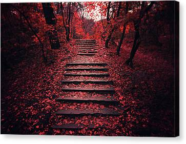 Red Leaf Canvas Print - Autumn Stairs by Zoltan Toth