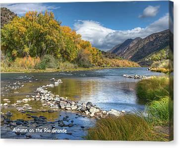 Canvas Print featuring the photograph Autumn Stance Card by Britt Runyon