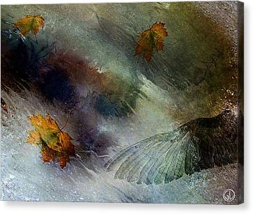 Autumn Storm Canvas Print by Gun Legler