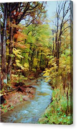 Canvas Print featuring the photograph Autumn Stream by Diane Alexander