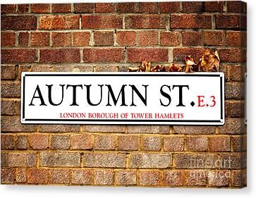 Autumn Street And Autumn Leaves Canvas Print by Jane Rix