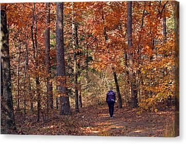 Autumn Stroll Canvas Print by Gayle Johnson