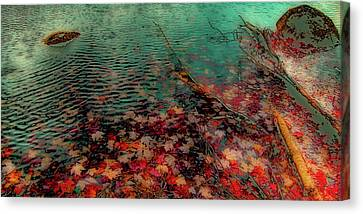 Autumn Submerged Canvas Print by David Patterson