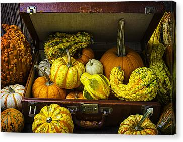 Autumn Suitcase Canvas Print by Garry Gay