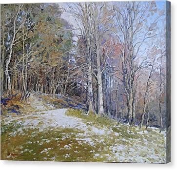 Autumn Sun Canvas Print by Andrey Soldatenko