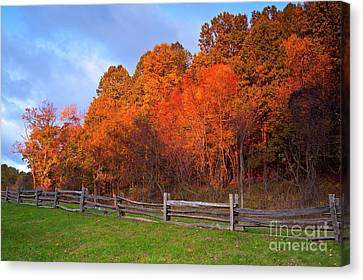 Canvas Print featuring the photograph Autumn Sunrise At Peaks Of Otter In The Blue Ridge by Dan Carmichael