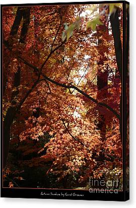 Autumn Sunshine Poster Canvas Print by Carol Groenen