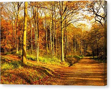 Autumn Canvas Print by Svetlana Sewell