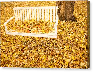 Autumn Swing Canvas Print by James BO  Insogna
