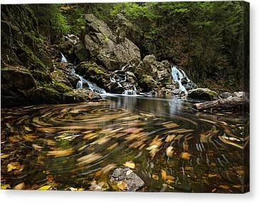 Canvas Print featuring the photograph Autumn Swirl by Juergen Roth