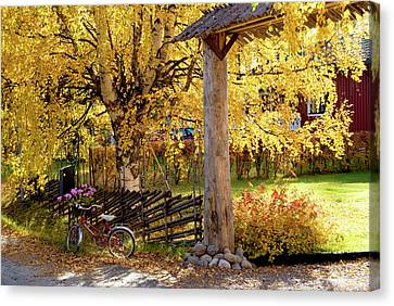 Rural Rustic Autumn Canvas Print