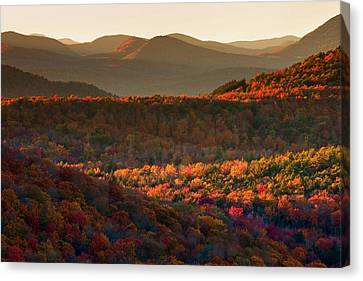 Autumn Tapestry Canvas Print by Neil Shapiro