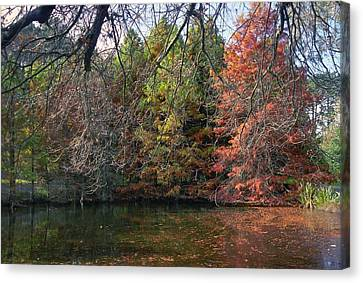Autumn Canvas Print by Tib Nagi