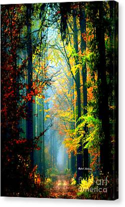 Autumn Trails In Georgia Canvas Print by Rafael Salazar