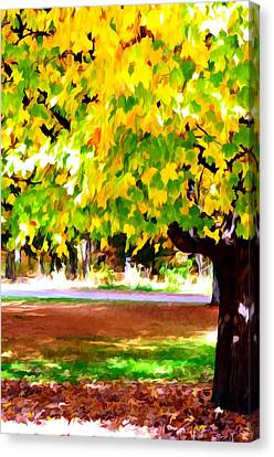 Autumn Trees 6 Canvas Print by Lanjee Chee