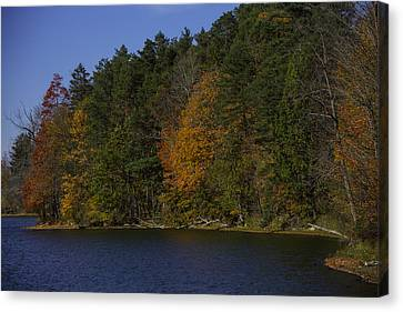 Autumn Trees Along The Shore Canvas Print by Garry Gay