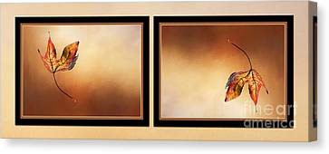 Autumn Up And Down 2 Canvas Print by Kaye Menner