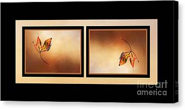 Autumn Up And Down Canvas Print by Kaye Menner