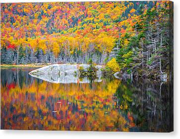 Autumn Vibrance Canvas Print by Black Brook Photography