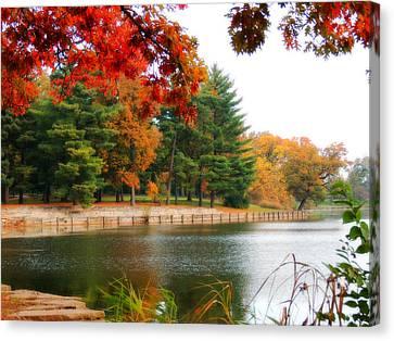 Autumn View Canvas Print by Teresa Schomig