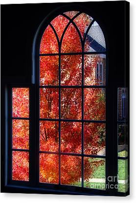 Autumn View Thru A Picture Window Canvas Print by Sue Melvin