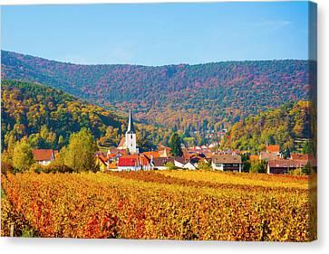 Palatina Canvas Print - Autumn Vineyard Palatinate  Pfaizerwald Region Germany by Philip Enticknap