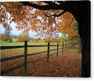 Canvas Print featuring the photograph Autumn Vista by Don Struke