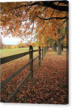 Canvas Print featuring the photograph Autumn Vista In Virginia by Don Struke