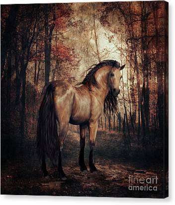 Bay Horse Canvas Print - Autumn Walk by Shanina Conway
