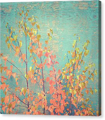 Canvas Print featuring the photograph Autumn Wall by Ari Salmela