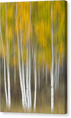 Canvas Print featuring the photograph Autumn Was A Blur by Patricia Davidson