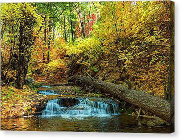 Canvas Print featuring the photograph Autumn Waterfall by Anthony Citro