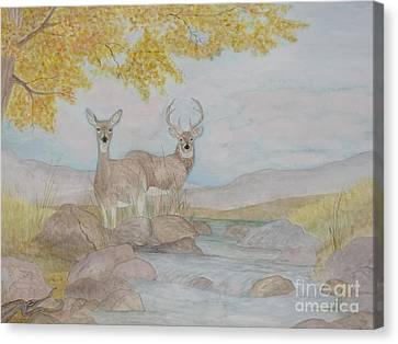 Autumn Watersong Canvas Print