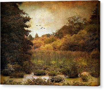 Autumn Wetlands Canvas Print by Jessica Jenney