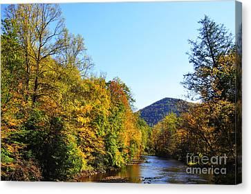 Autumn Williams River Canvas Print by Thomas R Fletcher