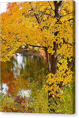 Scene Canvas Print - Autumn With Colorful Foliage 5 by Lanjee Chee